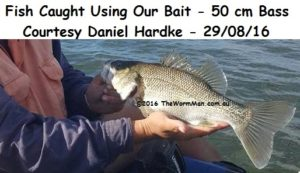 50cm Bass - Courtesy Daniel Hardke - Fish Caught Using My Bait Worms