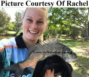 Courtesy Rachel - Fish Caught Using My Bait Worms