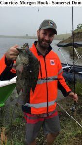 Courtesy Morgan Hook - Somerset Dam - Fish Caught Using My Bait Worms wm