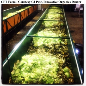 CFT CJ PETE innovative organics denver wm