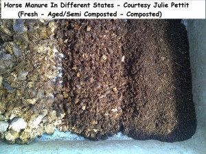 Horse Manure In Different States - Courtesy Julie Pettit wm